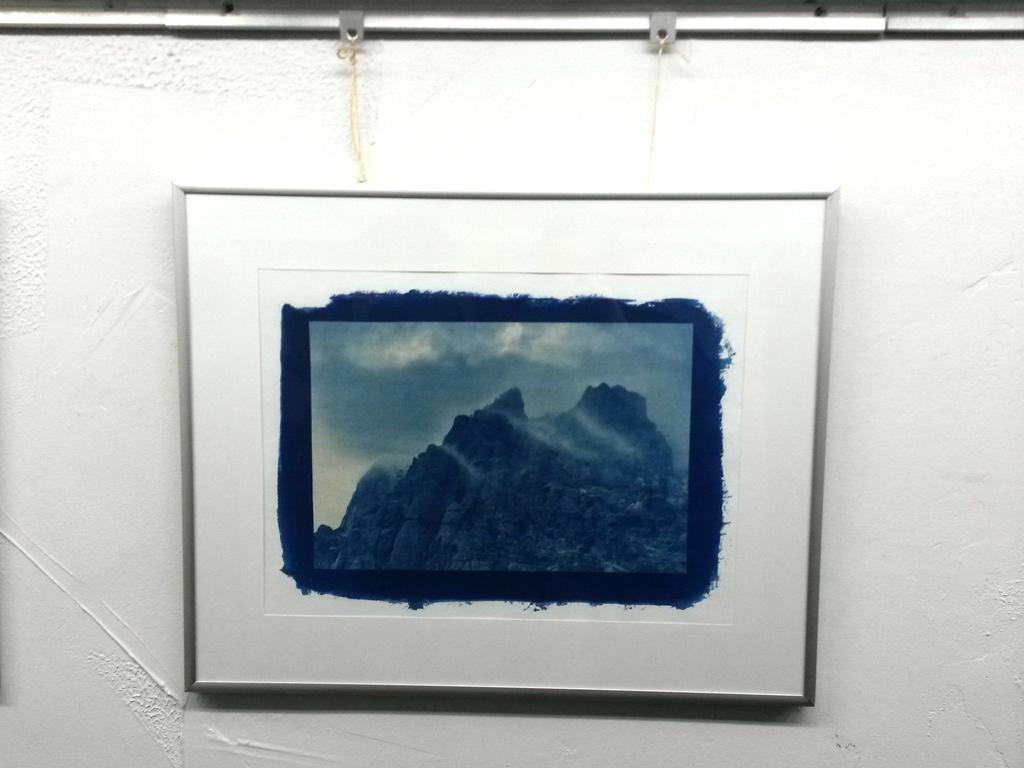 Цианотипия. Выставка работ Сохраненный момент