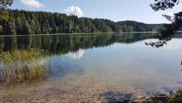 Озеро Болдук, 2019