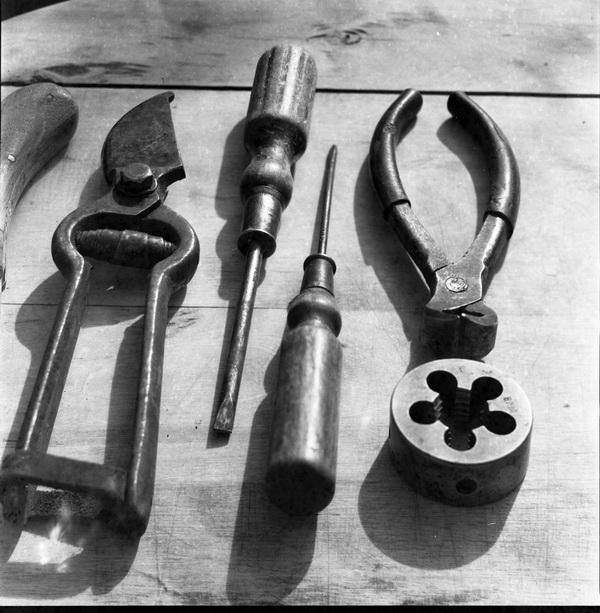 Проявитель Жана Фажа. Примеры снимков. Пленка ФН64